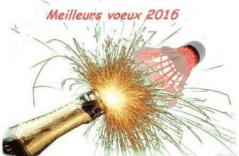 meilleurs voeux 2016